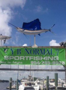 Catch quality fish with YB Normal Sports Fishing